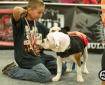 allentown-bully-convention2-13