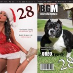 BGM Issue 28 (Printed Version)