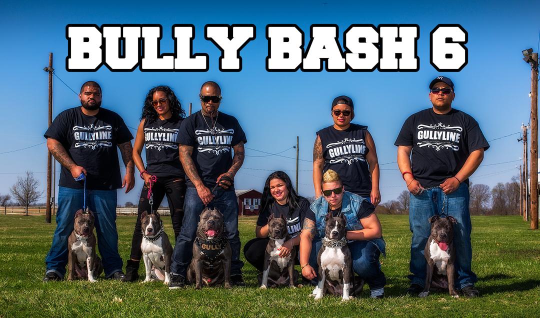 bully-bash-6