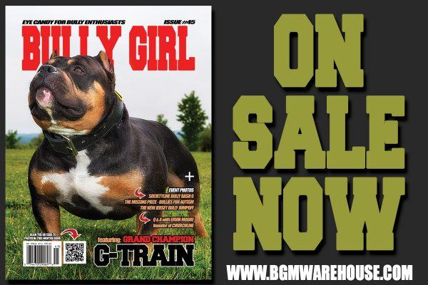 bully-girl-issue-45-promo