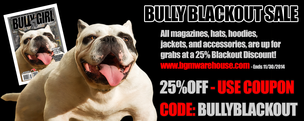 bully-blackout-sale