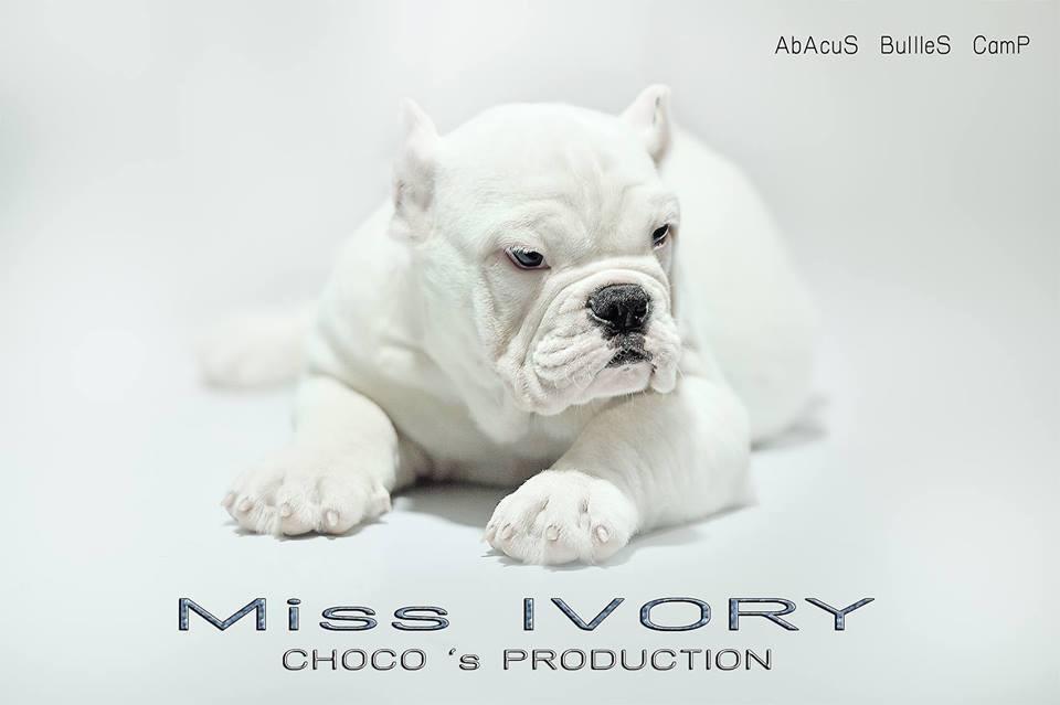 miss-ivory