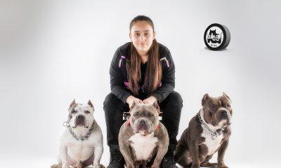 bullys finest kennels