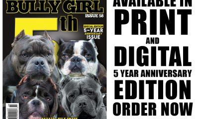 bullygirlmag-issue58-promo