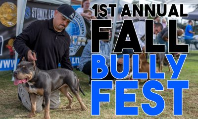1st-annual-fall-bully-fest