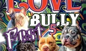 allentown peace love bully fest 5