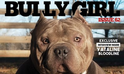 Bully Girl Magazine - Issue 62