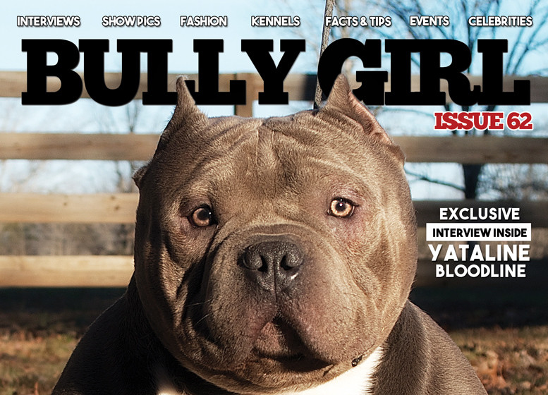 Bully Girl Magazine - Issue 62