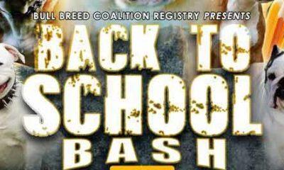 BBCR Back to School Bash