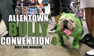 Allentown Bully Convention 4