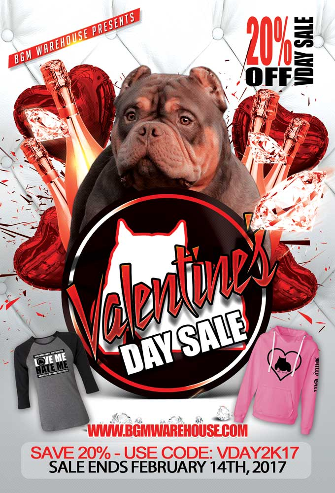 BGM Warehouse Valentines Day Sale 2017