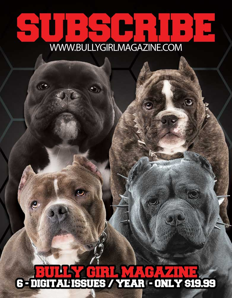 Bully Girl Magazine Digital Subscription