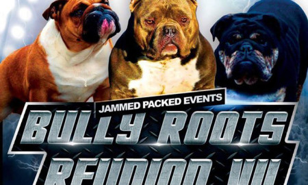 Bully Roots Reunion VII
