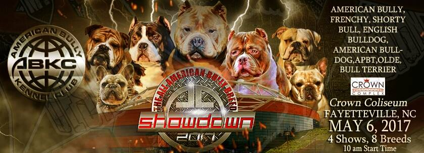 abkc-all-american-bully-breed-showdown