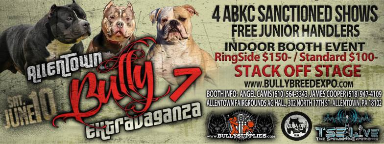 allentown-bully-extravaganza-7