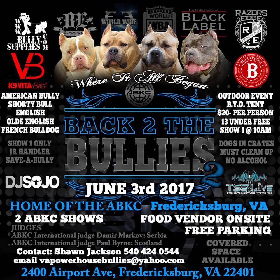 back 2 the bullies show flyer