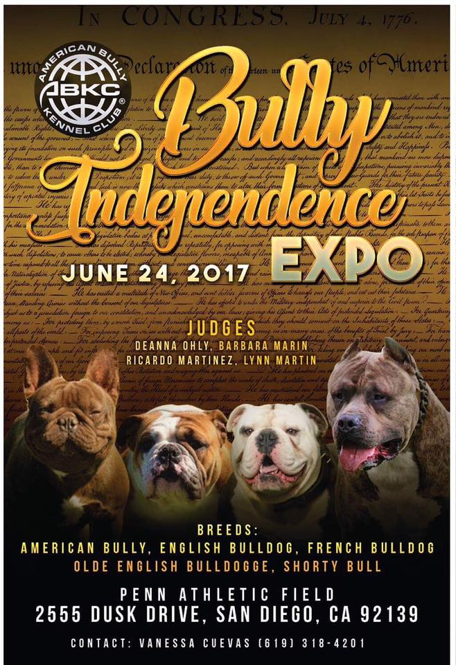 bully independence expo show flyer