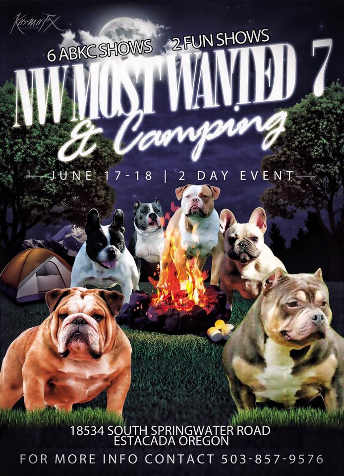 nw most wanted 7 bully show flyer