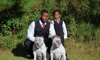 Turner Bullies: American Bully Breeder