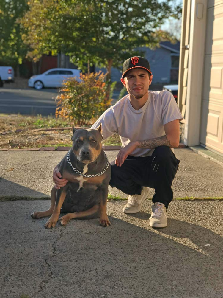 Bay Area Kennels