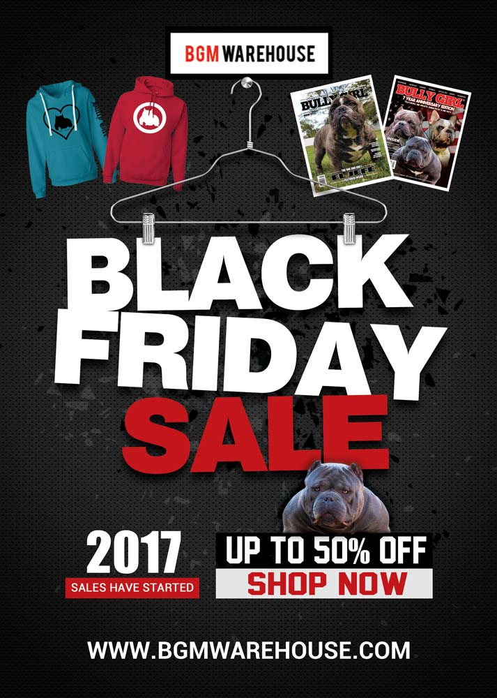 Black Friday 2017 Sales