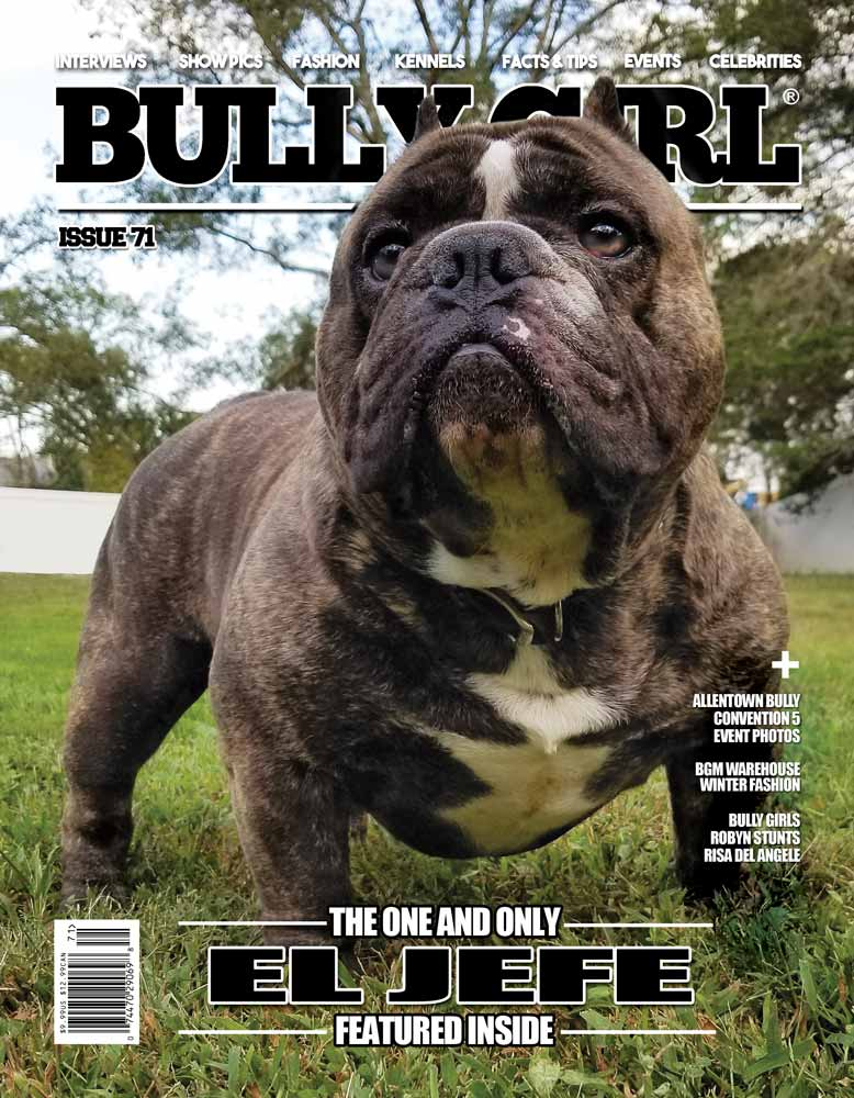 Bully Girl Magazine Issue 71