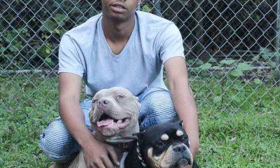 Triple J Bullies