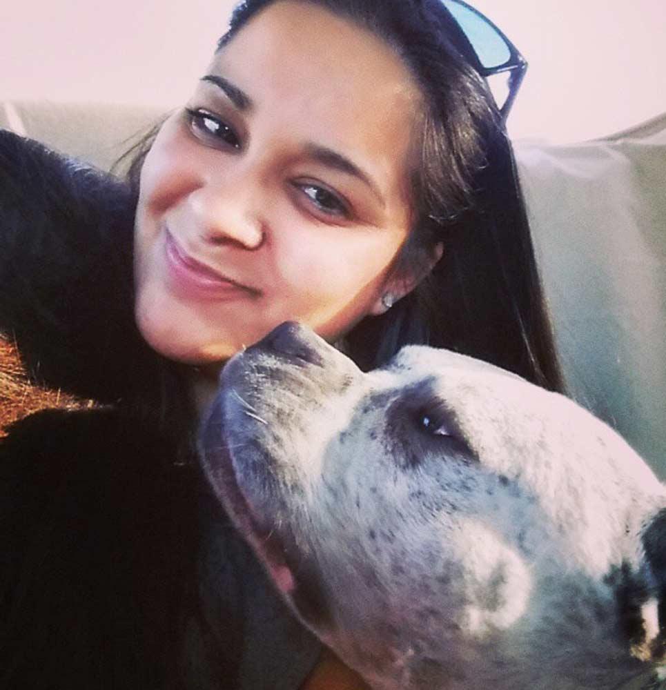 Kush Town Bullys: Exotic and Pocket Bully Breeder | Texas - Bully Girl ®